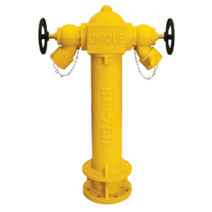 2-Way Fire Hydrant with Landing Valve